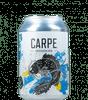 La Source Carpe logo